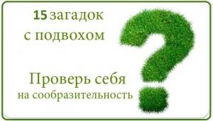 15 загадок. Умняки от mostiks.ru