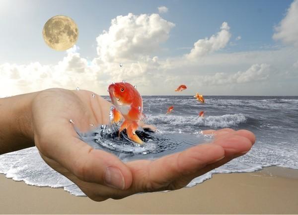 желания мечты визуализация