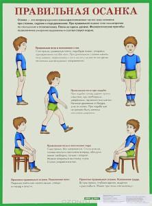 Формирование правильной осанки у детей. Упражнения